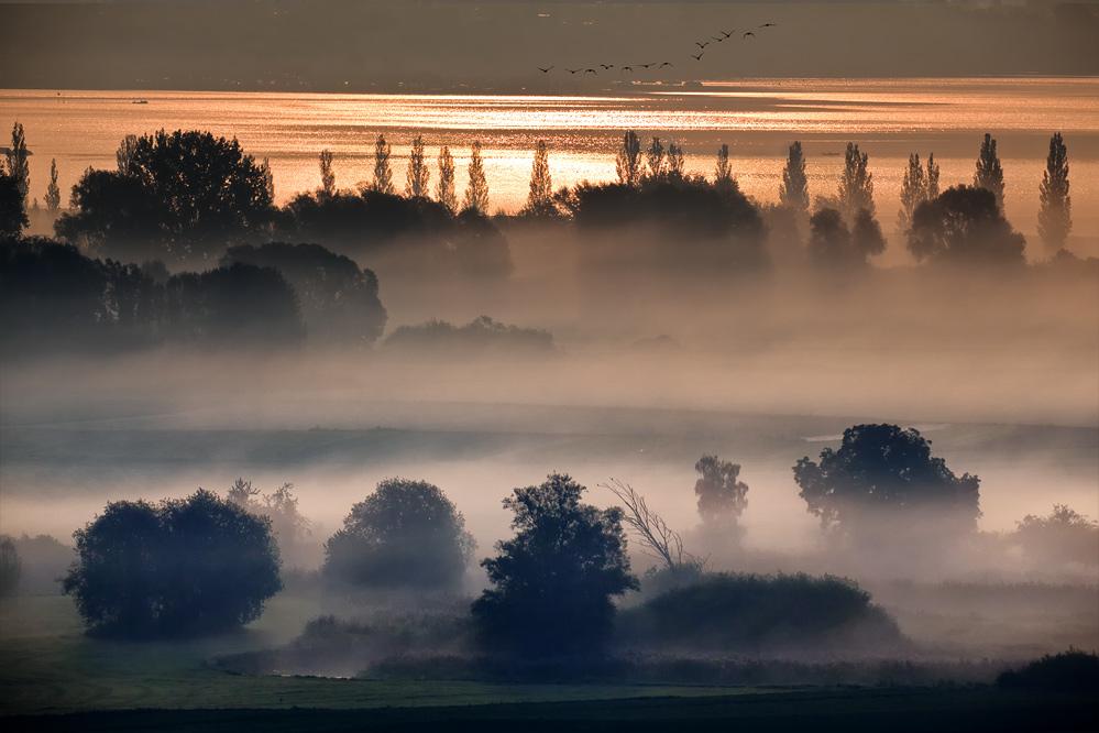 Nebelzauber Forum F U00fcr Naturfotografen