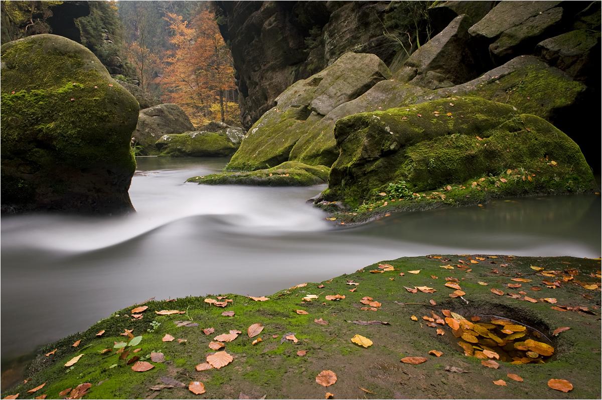 Wildwasser De Forum
