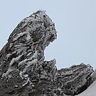 Fels und Eis