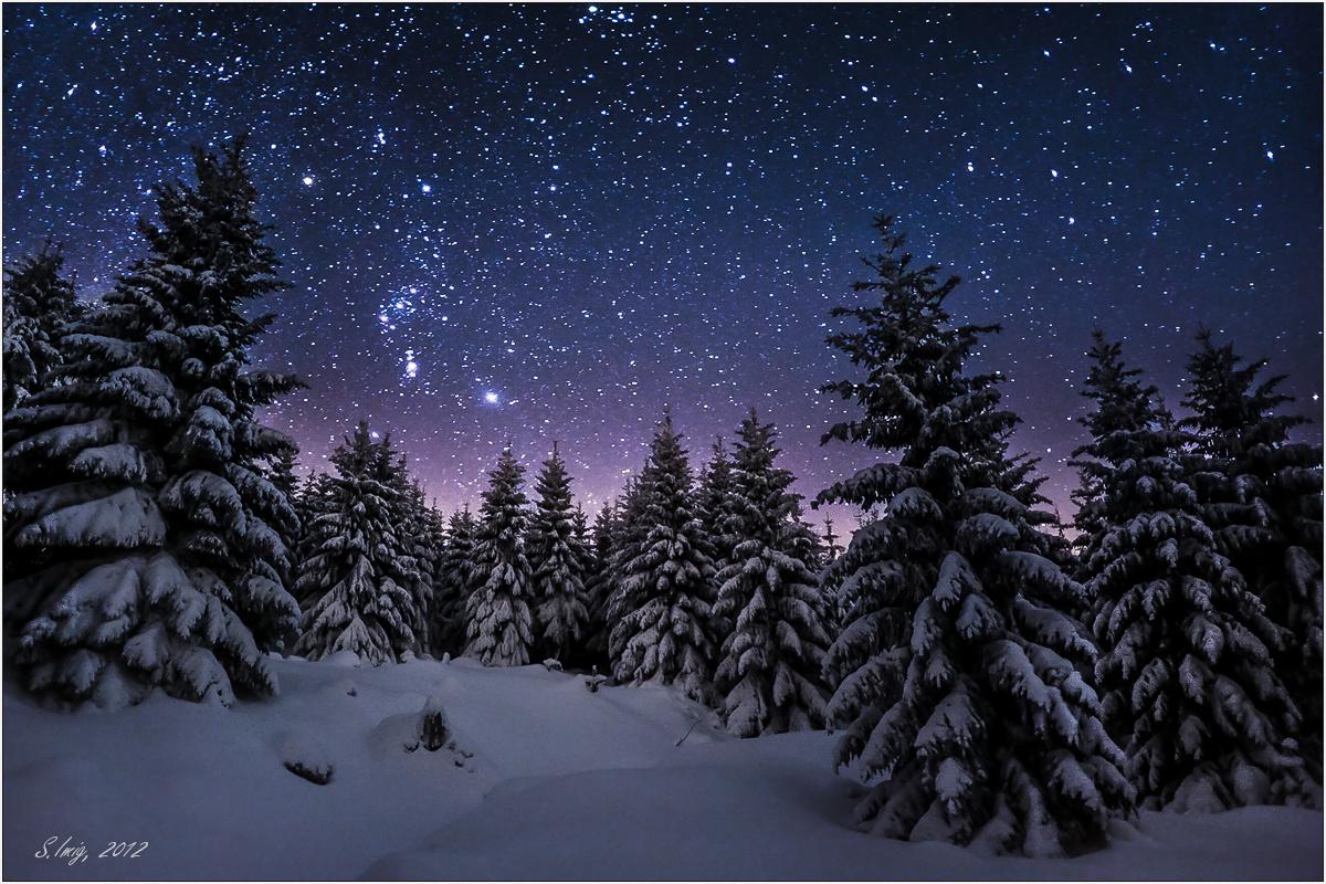 Stille Nacht, ... (Forum für Naturfotografen)