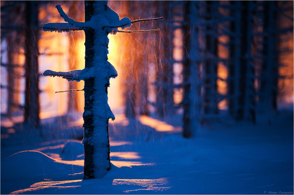 Ein Hauch Wärme (Forum für Naturfotografen) ~ Wasserhahn Warm Kalt Links Rechts