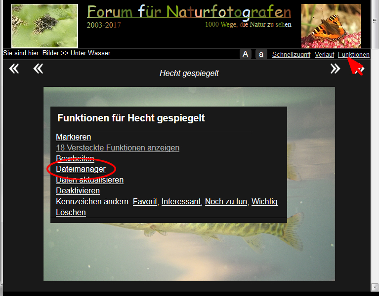 https://naturfotografen-forum.de/data/o/203/1016643/Vollansicht_Bild_Funktionen_Dateimanager.jpg