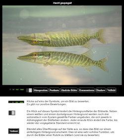 https://naturfotografen-forum.de/data/o/233/1169922/Bilder_bewerten_Thumb_250x281.jpg