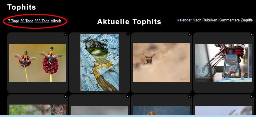 https://naturfotografen-forum.de/data/o/233/1169925/Tophits_03--Uebersicht.jpg