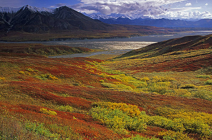 Indian Summer am Mount Eielson