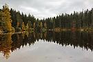 Herbst am Mathisleweiher