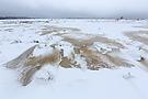Eiszeit im Hochmoor