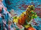 Unterwasserschaukel