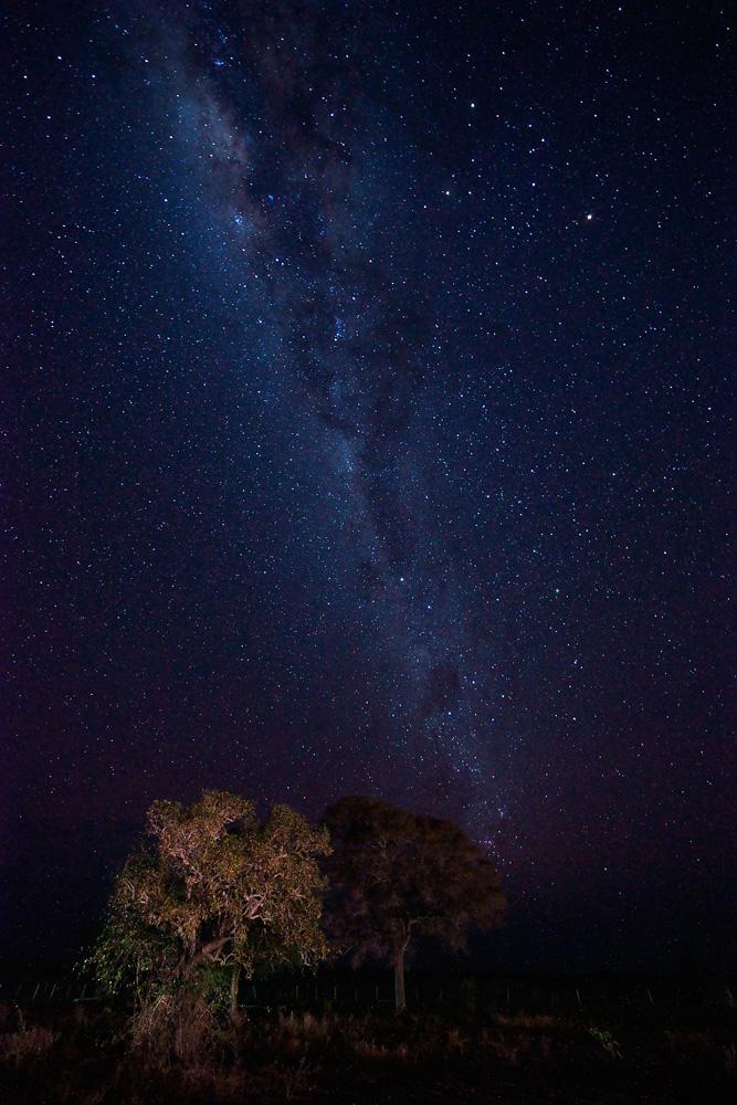 sternenhimmel im pantanal forum f r naturfotografen. Black Bedroom Furniture Sets. Home Design Ideas