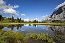 Berner Oberland.....