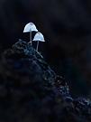 Leuchtende Bergsteiger