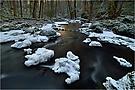 Winter am Alfbach