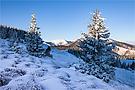 schöne Wintertage beflügeln das Herz
