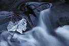 Eis und Wasser