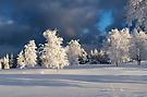 Winterlandschaft-2