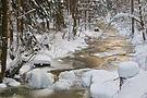 Der goldene Fluss