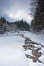 Winterland,