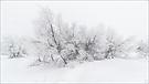 Eis und Schnee