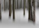 Schneesumpf