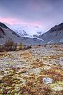 Morgenrot am Gletscher