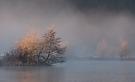 Wenn sich der Nebel lichtet...