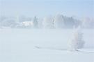 °°° Schnee von Gestern °°°