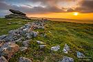 Irishman`s Wall im Dartmoor