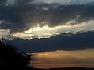 Sonne sucht Durchgang