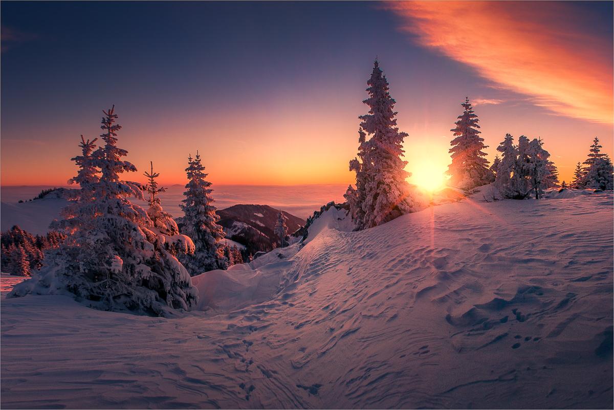 winterwunderland gaberl forum für naturfotografen