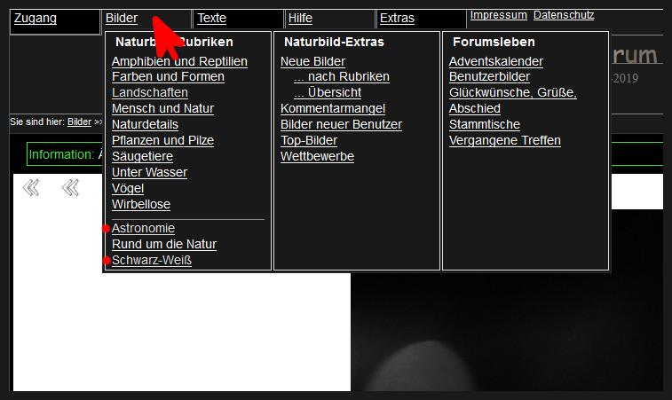 https://naturfotografen-forum.de/data/o/313/1565099/Bilder-Rubrikenuebersicht-Pseudorubriken.jpg