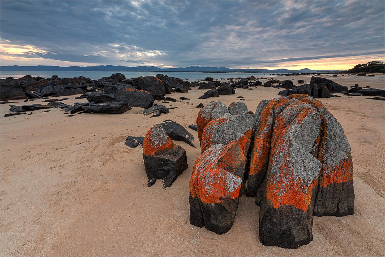 Hawley Beach Forum für Naturfotografen