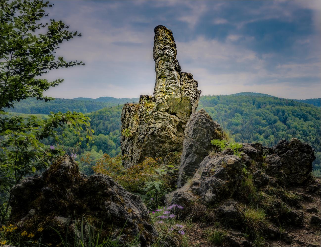 https://naturfotografen-forum.de/data/o/347/1738423/WH5_3705_ed-2.JPG