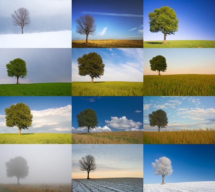 Jahreszeiten forum f r naturfotografen for Fein wohnzimmer bilder fur hintergrund